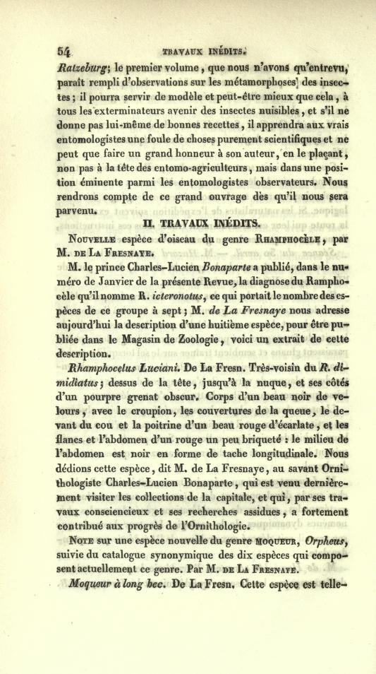 II. Travaux Inedits. Nouvelle Espece d'Oiseau du Genre Ramphocele