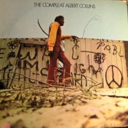 Albert Collins - Soul Food