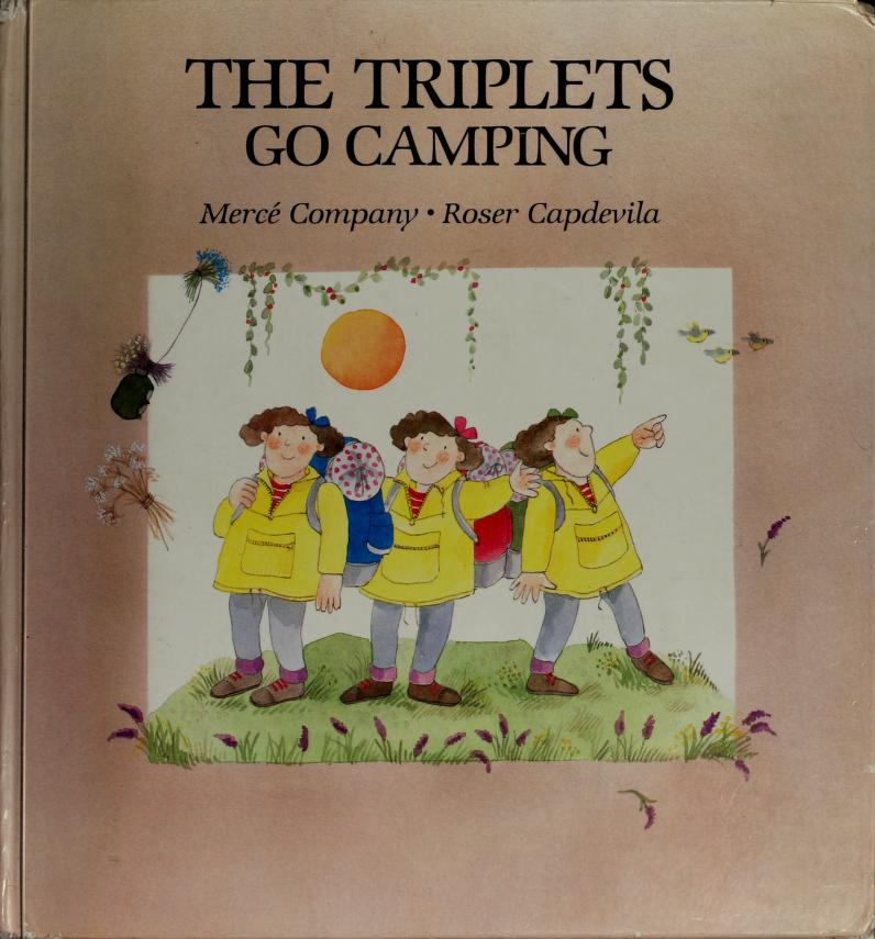 Triplets Go Camping by RH Value Publishing